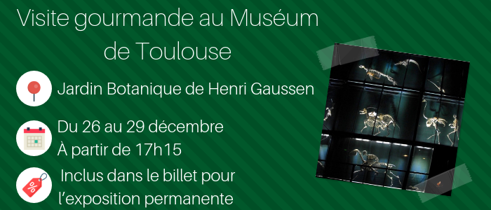 Visite gourmande museum Toulouse