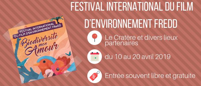 Festival FREDD