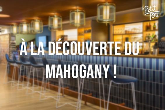 À LA DÉCOUVERTE DU MAHOGANY !